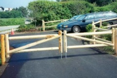 2-Rail-Dowel-End-White-Cedar-Post-and-Rail-with-Double-Drive-Gate_05