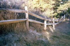 2-Rail-Locust-Post-and-Rail_09